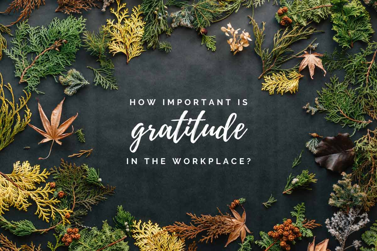 how important is gratitude in the workplace? especially as the holidays roll around